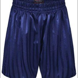 Shadow Stripe Shorts Navy